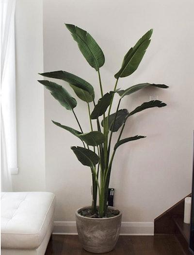 Silk Tree Warehouse Bird Of Paradise Palm Tree Potted Plant