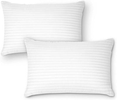 DreamNorth Plush Gel Pillow (2-Pack)