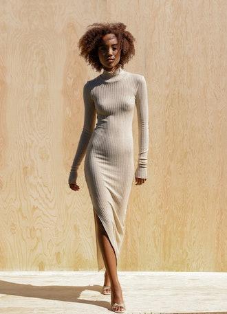 Leon Long-Sleeve Turtleneck Dress