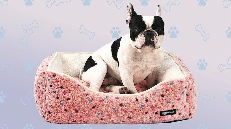 best dog bolster beds