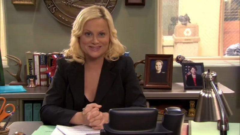 The Parks & Rec stars are reuniting for Democratic fundraiser