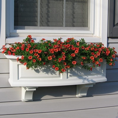 Mayne Fairfield Window Box Planter