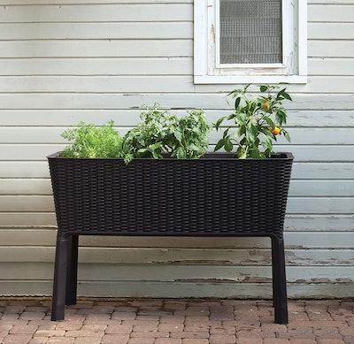 Keter Raised Garden Bed