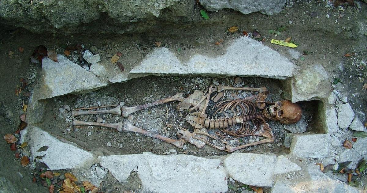 e13db2a1 a448 49a4 8b52 e854ddd77437 bones jpeg?w=1200&h=630&q=70&fit=crop&crop=faces&fm=jpg.'