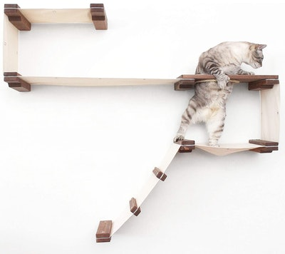 CatastrophiCreations Cat Play Wall