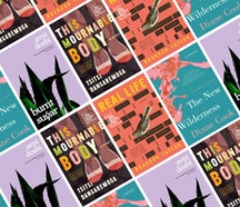 A montage of the Booker prize shortlist book covers
