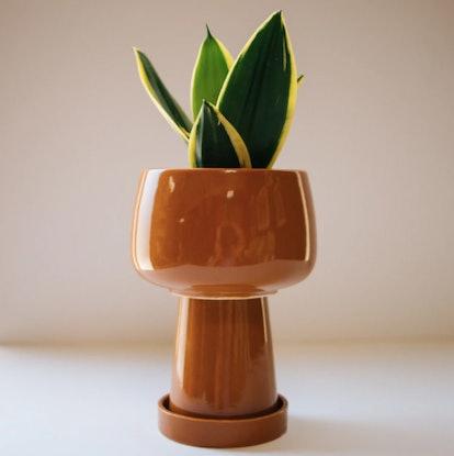 Kaya 3-Piece Ceramic Planter