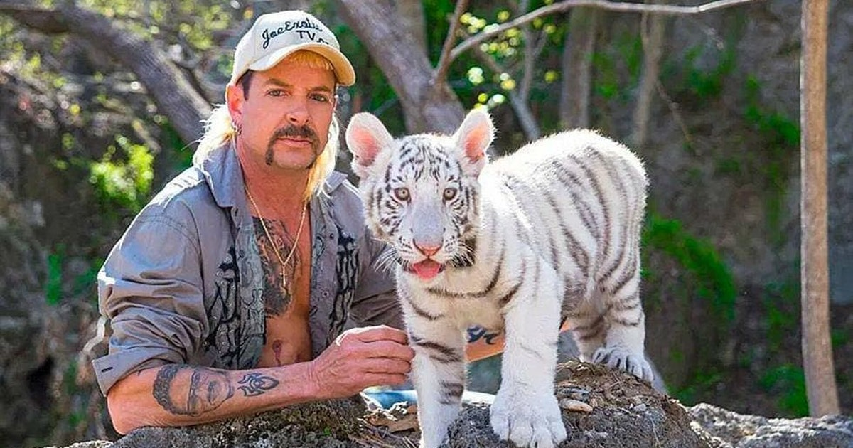 6 months after 'Tiger King,' Joe Exotic's tigers face a precarious future