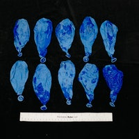 """Scientists composted """"biodegradable"""" balloons. Here's what happened next."""
