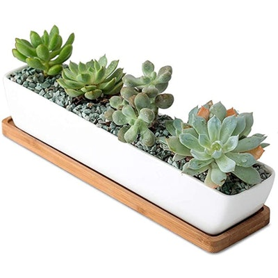 Sea Star Long Rectangular Planter