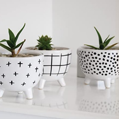 Carlton Lane Sofia Pots For Succulent Plants (Set of 3)