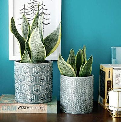 Greenaholics Hexagon Patterned Ceramic Pots (Set of 2)