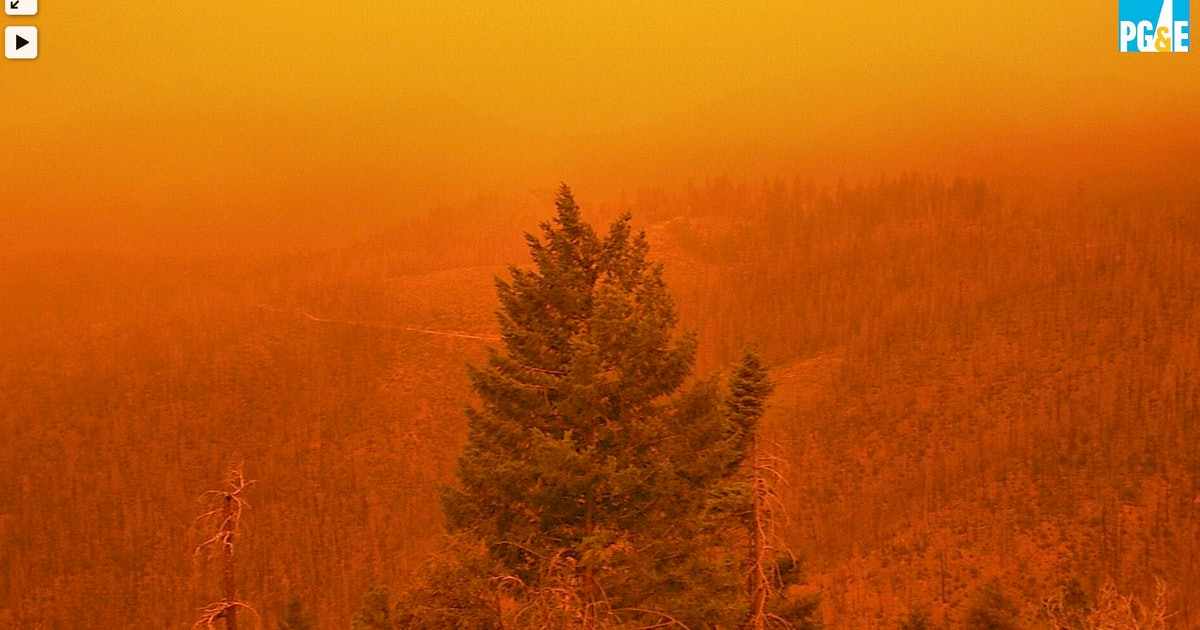 """""""Cascading disasters"""": soccer-ball sized cameras are cataloging the burning West"""