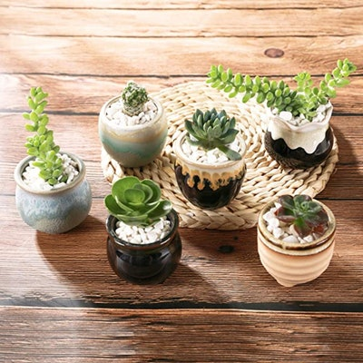 T4U Small Ceramic Succulent Pots (Set of 12)