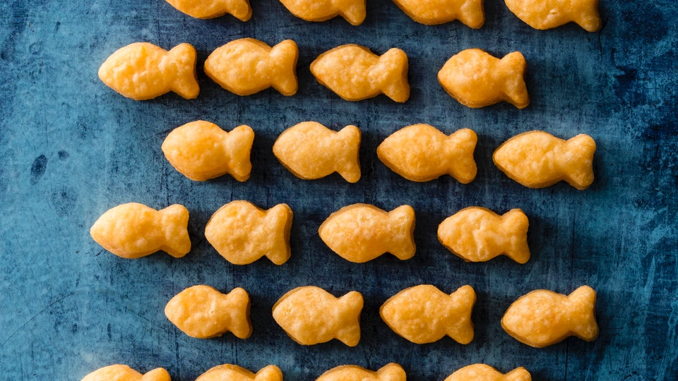 diy cheddar fish crackers from america's test kitchen cookbook