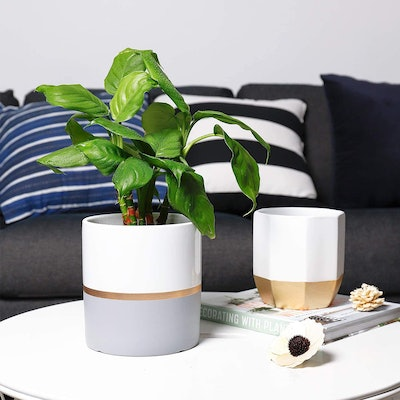 POTEY Planters (2-Pack)