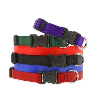 Basic Solid Dog Collar