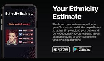 Gradient ethnicity estimate screenshot Elvlis