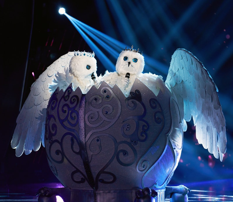 The Snow Owls in 'The Masked Singer' Season 4 premiere episode