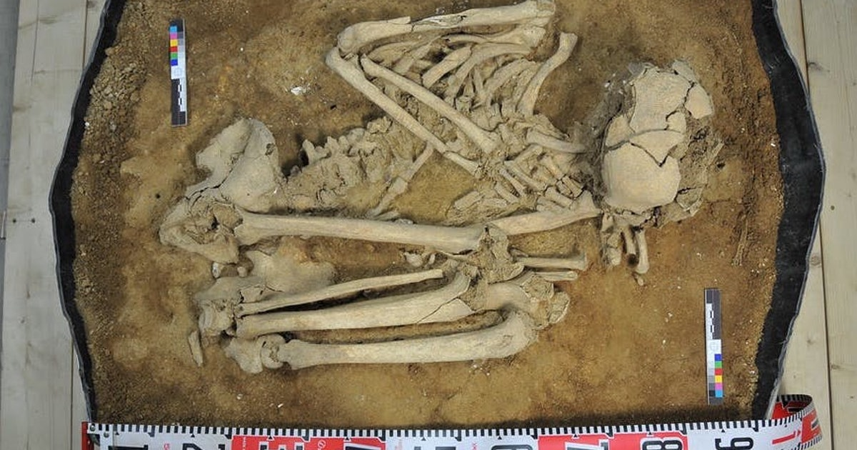 40,000-year-old bone reveals East Asia's ancient history