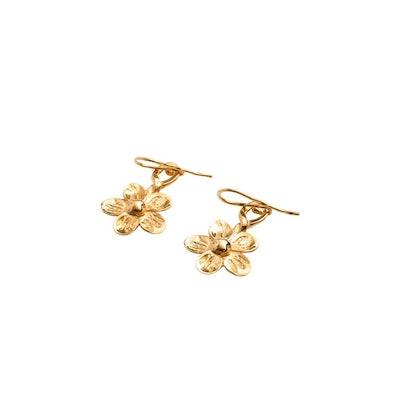 Benjul Droplet Earrings