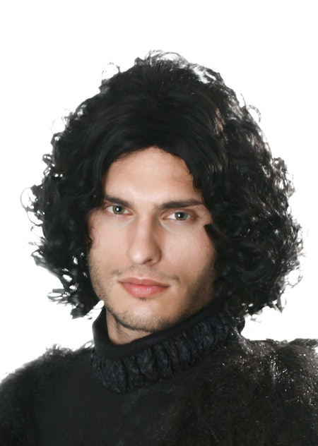 Dark Northern King Wig