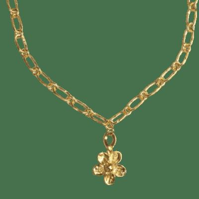 Benjul Chain