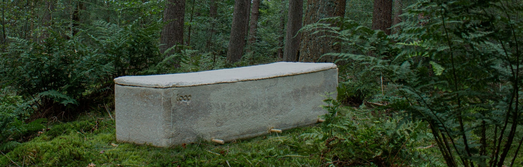 Loop coffin in woods