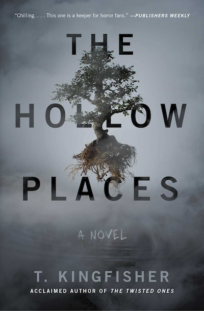 'The Hollow Places' by T. Kingfisher