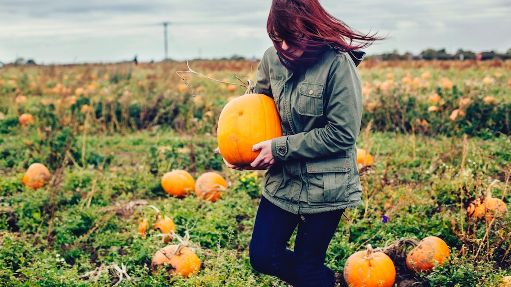 30 Pumpkin Picking Puns Because You Picked The Cutest In The Patch