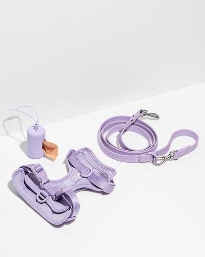 Harness Walk Kit