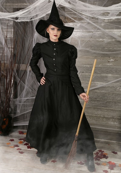 Plus Size Witch Costume
