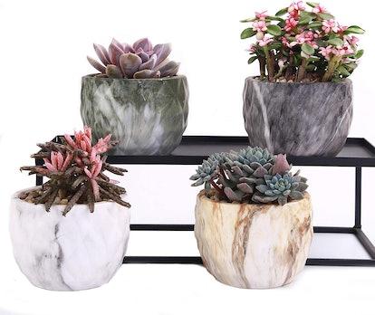 winemana Ceramic Planters (Set of 4)