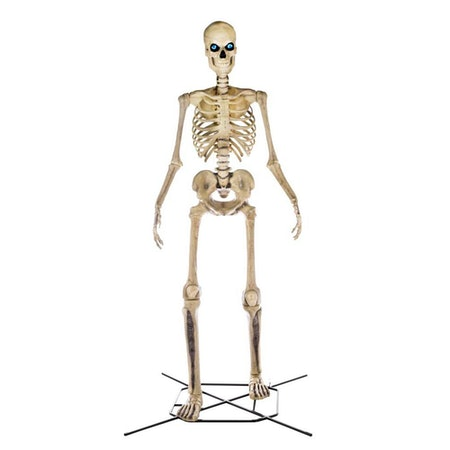 Home Accents 12 Foot Skeleton