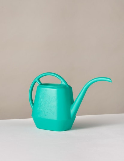 The Sill Watering Can