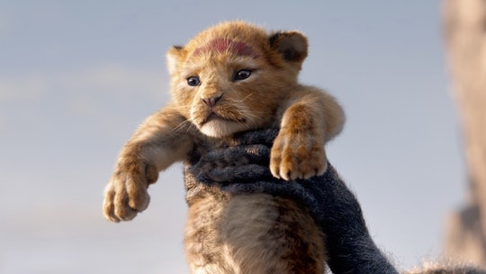 A new 'Lion King' is in the works at Disney+.