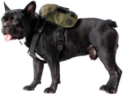 OneTigris Eureka K9 Dog Backpack