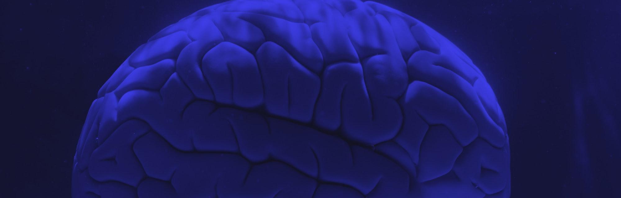 Brain in water