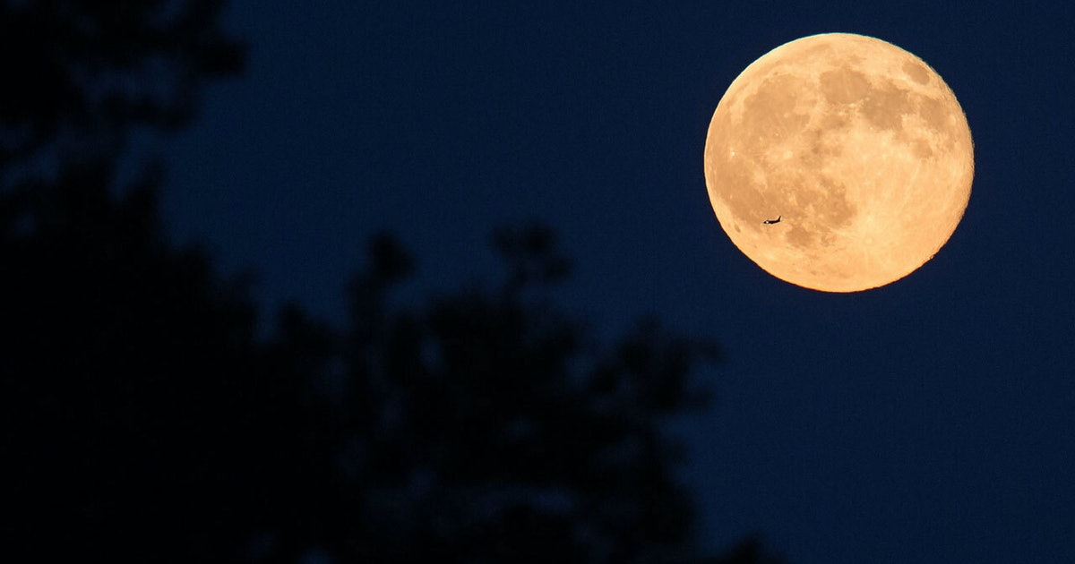 You need to see the Harvest Moon in the night sky Thursday - Inverse
