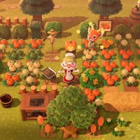 'Animal Crossing' Pumpkins guide: DIY recipes, how to grow various colors