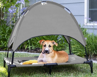 Best Choice Products Raised Dog Bed With Removable Canopy