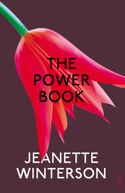 'The PowerBook' by Jeanette Winterson