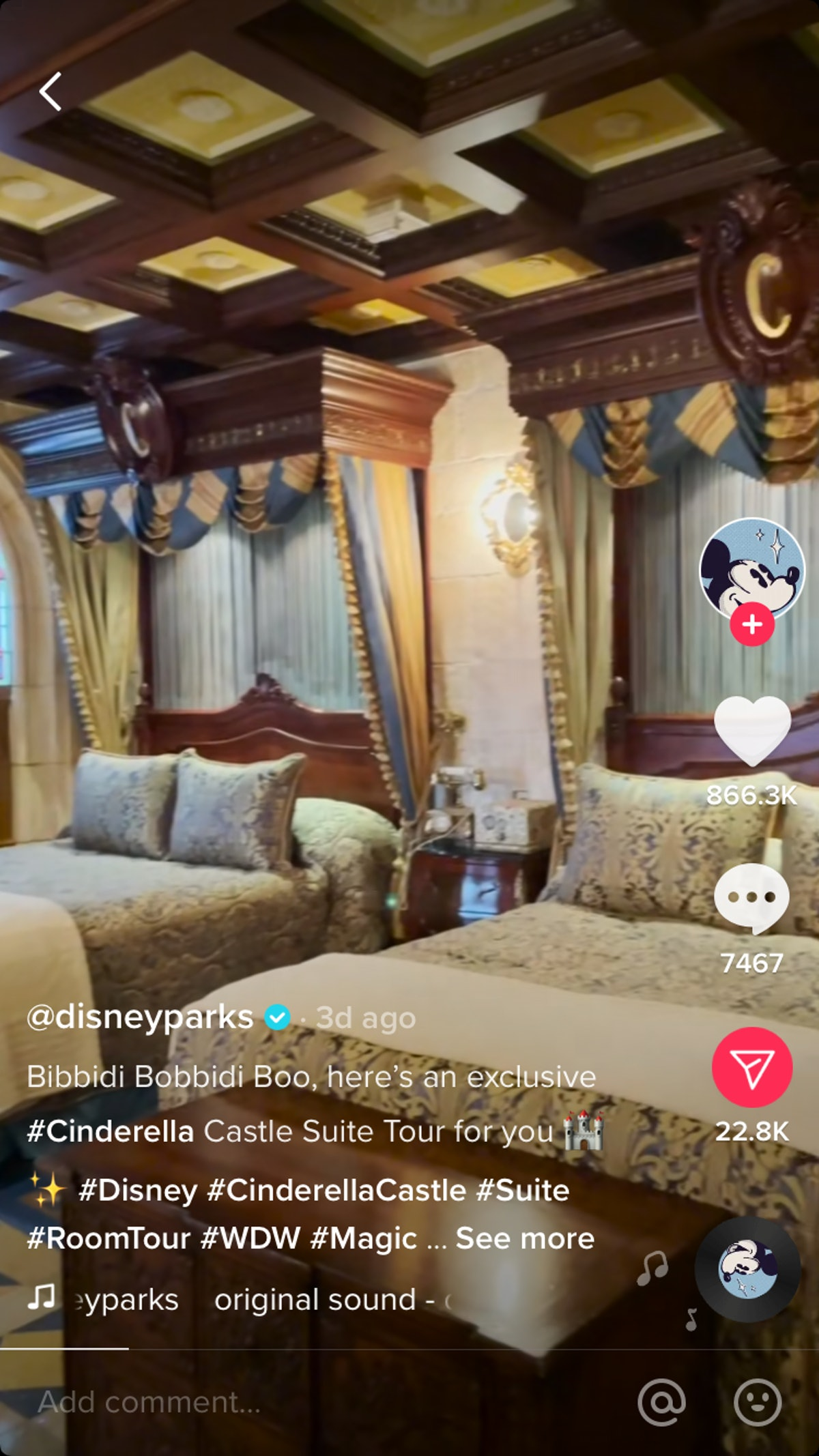 Disney's video tour of the Cinderella Castle Suite on TikTok has gone viral.