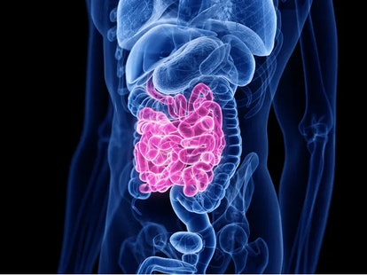 Nutrients get absorbed into your bloodstream — or not — as digestion occurs in your small intestine....