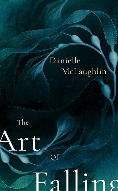 'The Art of Falling' by Danielle McLaughlin