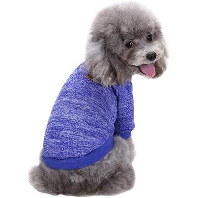 Fashion Focus On Dog Sweater