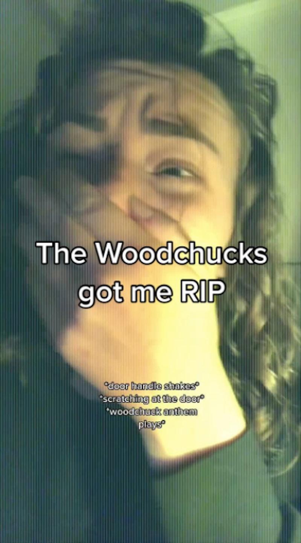 A screenshot of a viral woodchuck revolution TikTok.