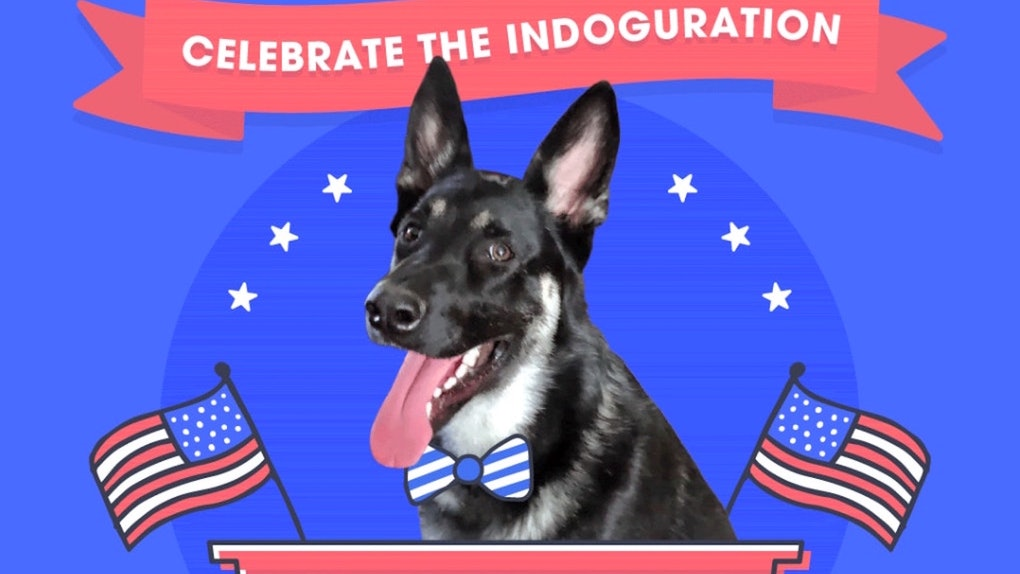 Major Biden's indoguration video is so cute.