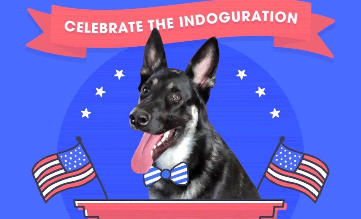 Major Biden's indoguration video is so cute.