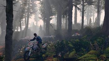 grand theft auto 5 motorbike woods